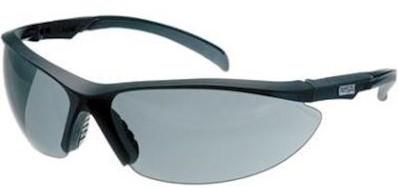 MSA Perspecta 1320 veiligheidsbril