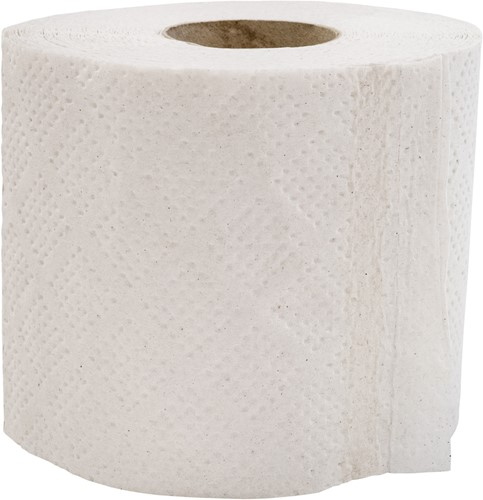 Toiletpapier recycled 2-laags (16x4)