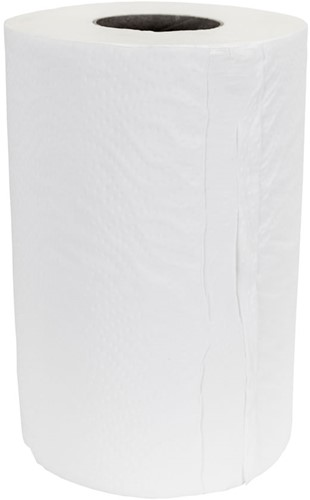 Minirol Cellulose (21cmx120m) 1-laags 12 stuks
